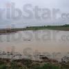 Tribune-Star/Rachel Keyes<br /> Swampy fields: A flooded field near the Eel River in Clay County.