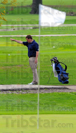 Tribune-Star/Jim Avelis<br /> Here's better: Patriot golfer Will Pollack drops away from a cart path at the second green.