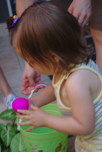 Her first real Easter Egg hunt.  She did a great job!