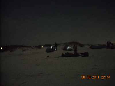 Assateague Trip March 2011