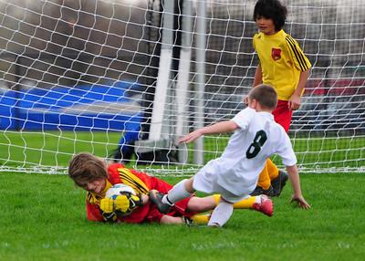 Boys U10 - Bees Soccer Academy vs. Arsenal