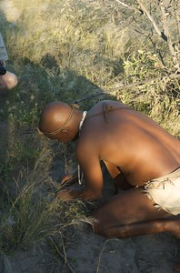 Kalahari bushman walk - Leslie Rowley