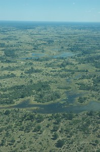 Above the Okavango Delta - Leslie Rowley