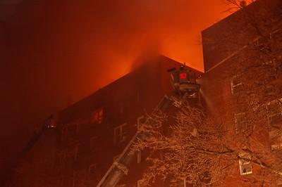 Brooklyn 2-19-11 022