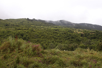 Buzau - Iulie 2011