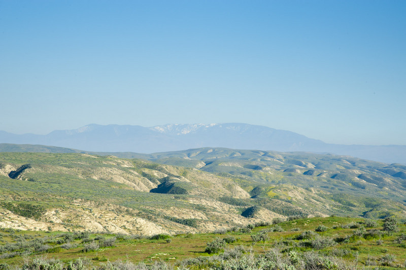 Mt. Pinos, 60 miles distant