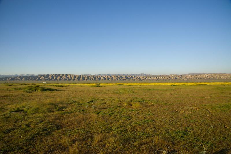 Yellow band across the plain