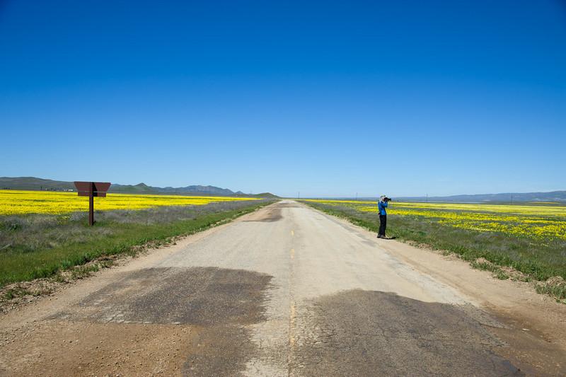 Straight ahead