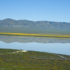 Temblor Range reflected in Soda Lake