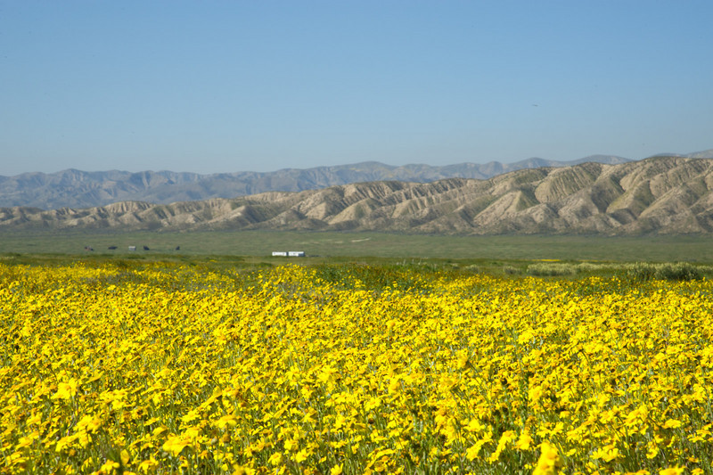 Temblor Range beyond the yellow