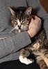 Chantal holding Puss.