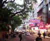 Haiphong Road, camphor trees