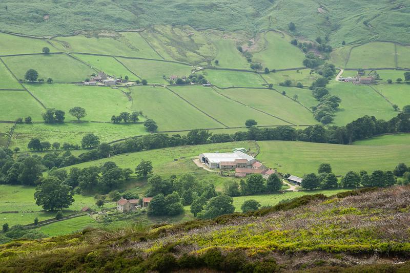 Farmland and dale