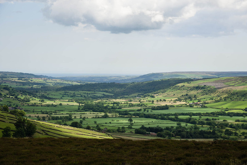 Dales and moors