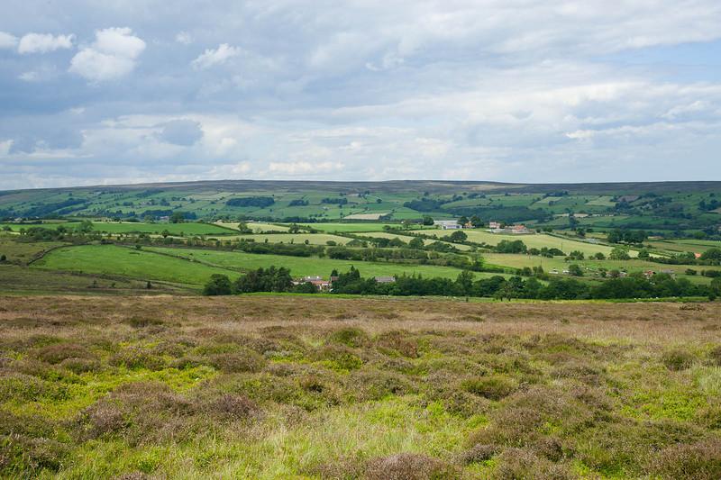 Farms beside the moor