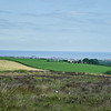 Green fields and Whitby