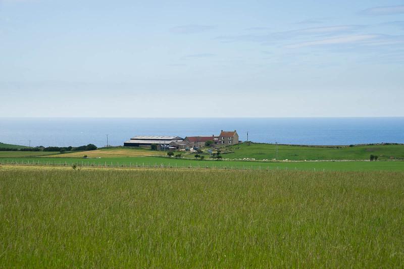 Farm by the sea