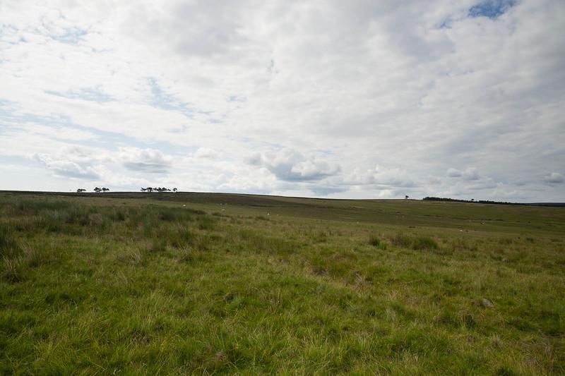 Sheaton Low Moor