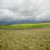 Enclosed pasture