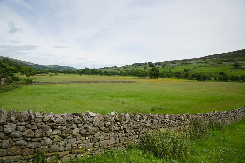 Rich pastures
