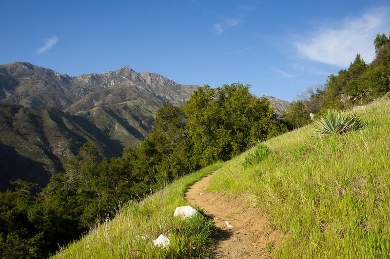 Cone Peak trail