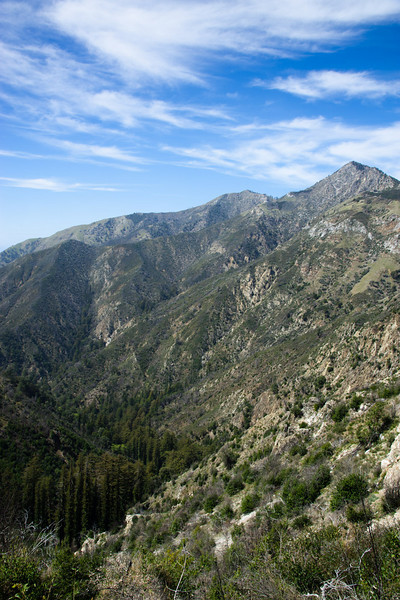 Vicente Creek valley and Cone Peak