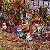 Whole family: The McClains have about fifty garden gnomes, in addition to solar lights and religious statuary.
