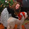 Christmas 2011 - 03
