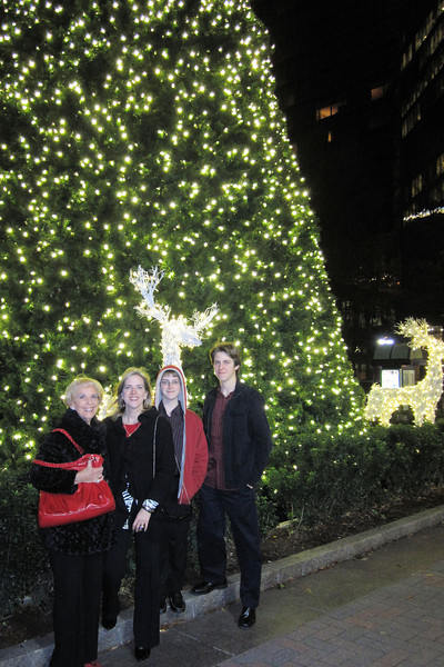 Trade & Tryon Christmas Tree