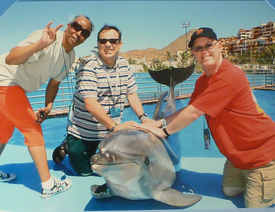 Meeting the dolphins in Cabo San Lucas