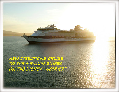 Disney Cruise #1113