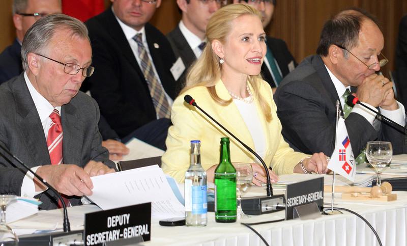 Liechtenstein / Ms Aurelia Frick Minister of Foreign Affairs (Chair)