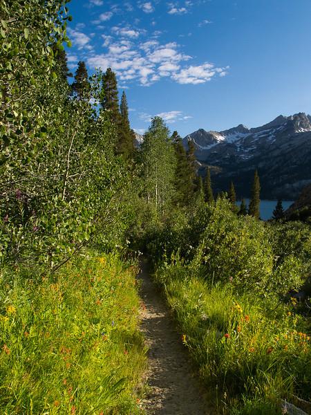 Trail to South Lake
