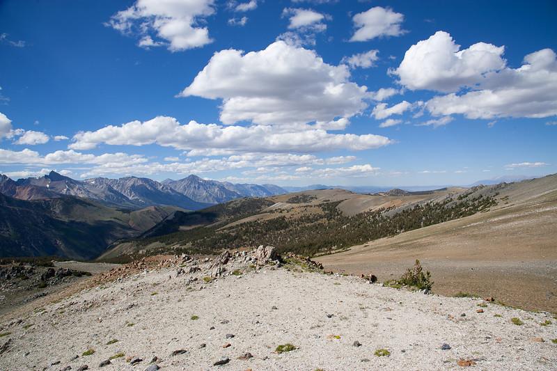 Coyote Ridge north