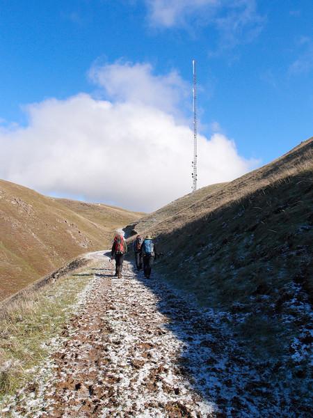 Toward the tower