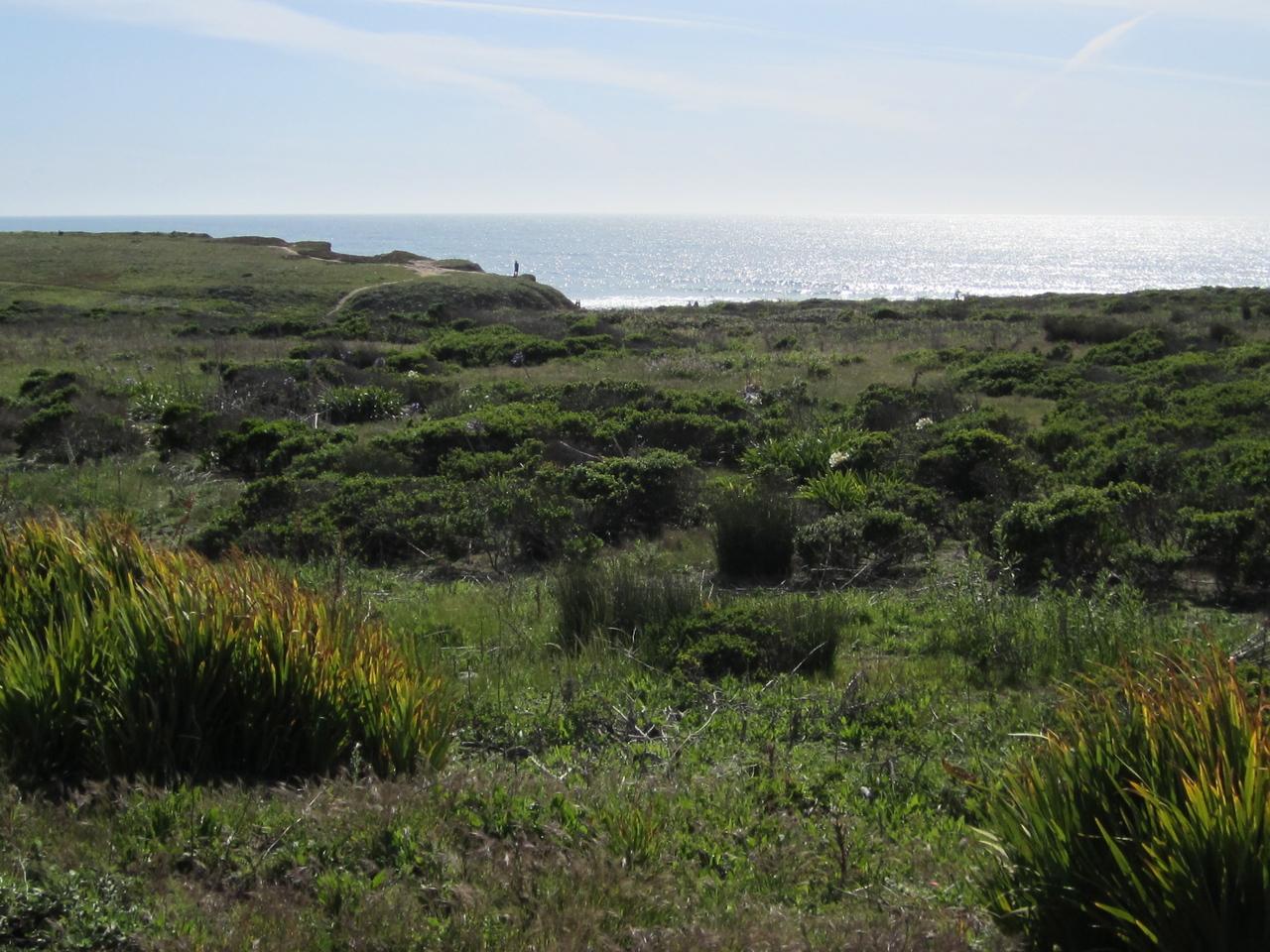 Coastline near Montara
