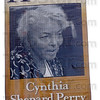 Tribune-Star/Jim Avelis<br /> Recognition: Terre Haute native Cynthia Perry has been recognized for her work both as an ambassador and her work at the World Bank. This banner of her as ahometown Hero is located on the northeast corner of 7th Street and Wabash Avenue. There are others in the downtown area.