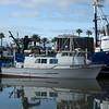 Kleine Welt...die Pacific Quest aus San Diego liegt zufaellig im Long Beach Hafen. Noch nie zuvor habe ich auf einem Schiff soviel gekotzt wie auf ihr auf meiner Tunfishtour vom letzten Jahr
