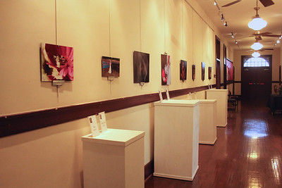 Some of the photos featured in the student show at Gardner-Webb.