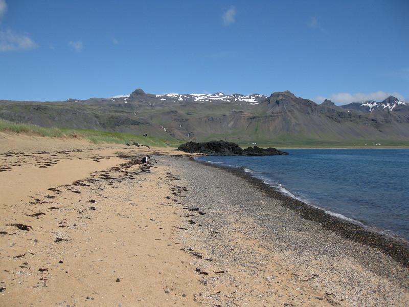 Falleg strönd við Búðir