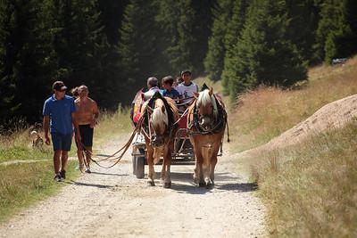 ferie2011_Alpe di Siusi, Fedaia, Alleghe