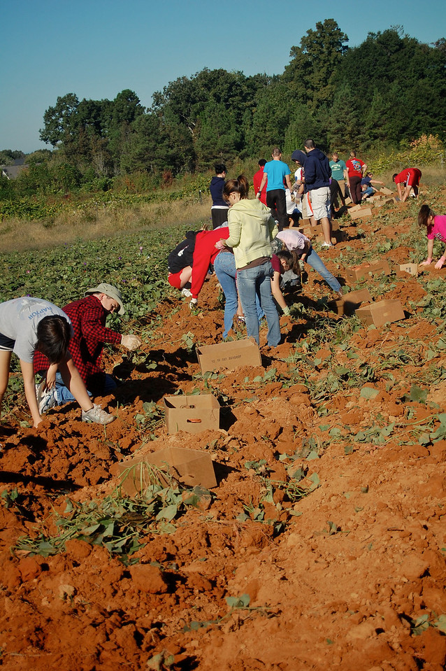 Photos of Service Projects from Stephanie Richey.