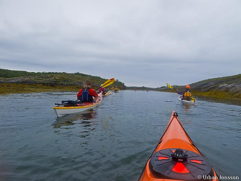 Vi paddlade genom labyrinten vid Sleneset, där man verkligen måste ha koll på vattennivån för att inte behöva vända.....