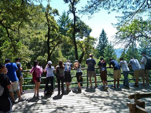Looking at Castle Rock Falls
