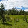 Mammoth Peak across Dana Meadows