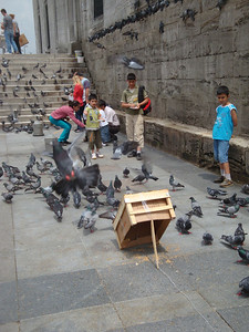 Seed sellers and buyers ensured a permanent flock of pigeons outside the Yeni Mosque, which locals would sometimes catch. I saw one caught and released apparently for 'fun'.