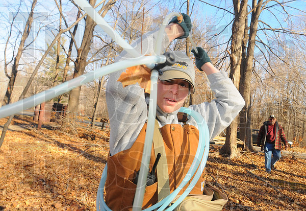 Getting ready: Kara Kish, assistant superintendant of teh Vigo County Park's Department, pulls sugar water lines tight in Prairie Creek Park Wednesday afternoon. The work is being done in advance of the tapping of some 3000 maple trees for the making of maple syrup this Spring.