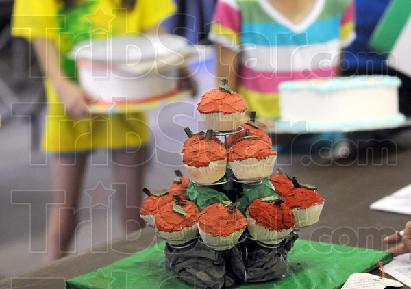 Cakes: Detail photo of cakes being entered in the 4-H competiton at the Vigo County Fairgrounds Saturday morning.