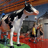 Barn yard: The Terre Haute Children's Museum has an agriculture display complete with a functional milk cow.