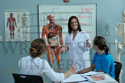 6968 Anatomy Grad Program for web banner 7-22-11